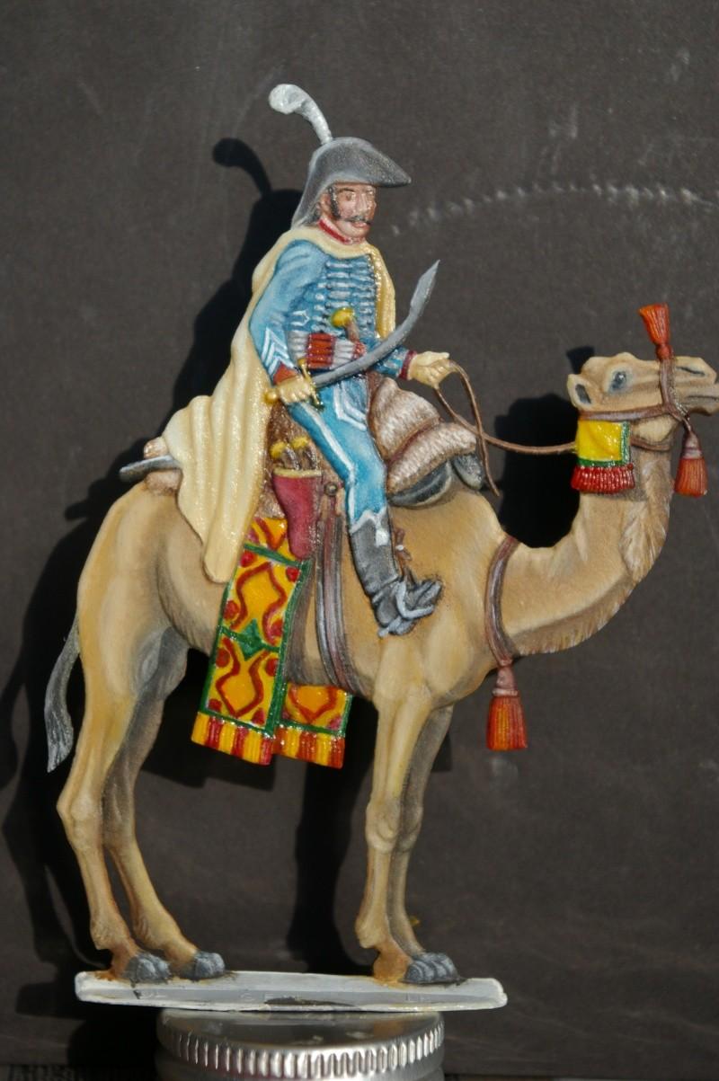 officier régiment des dromadaires en Egypte  GLORIOUS EMPIRE 54 MM Drom_040
