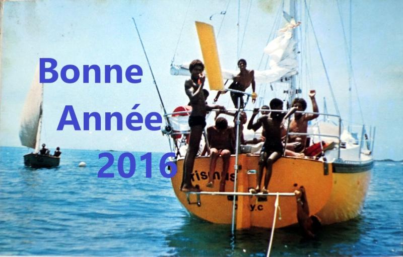 Bonne année 2016 Bonne_11