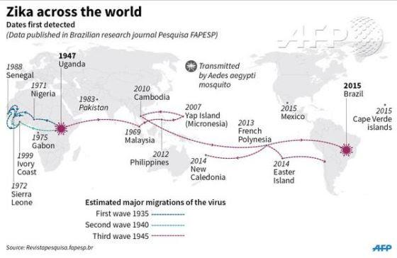 Zika Virus and a Strange Case! (WiPoKuLi) Unname32