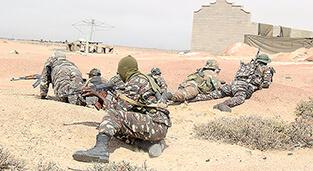 Armée Namibienne / Namibia Defence Force Nami10