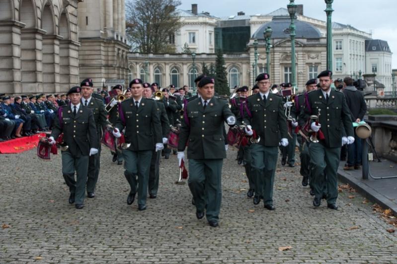 Armée Belge / Defensie van België / Belgian Army  - Page 39 1040