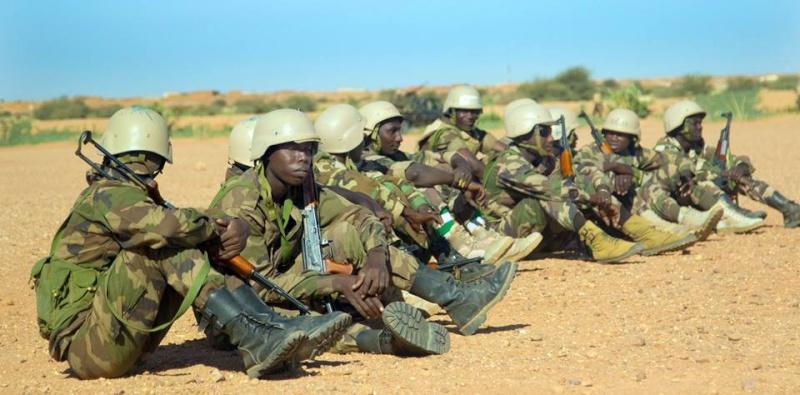 Forces Armées Nigeriennes / Niger Armed Forces ( FAN ) - Page 2 13176