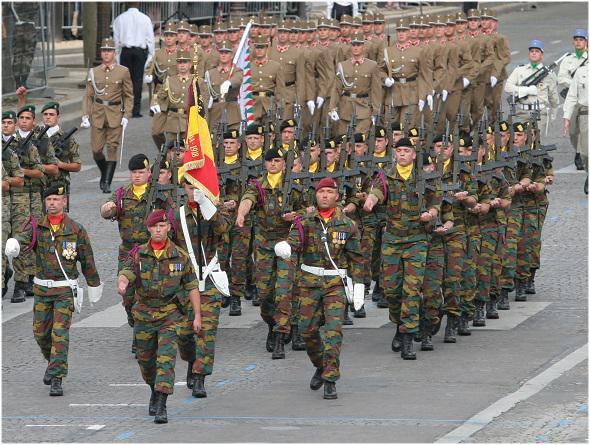Armée Belge / Defensie van België / Belgian Army  - Page 40 13271