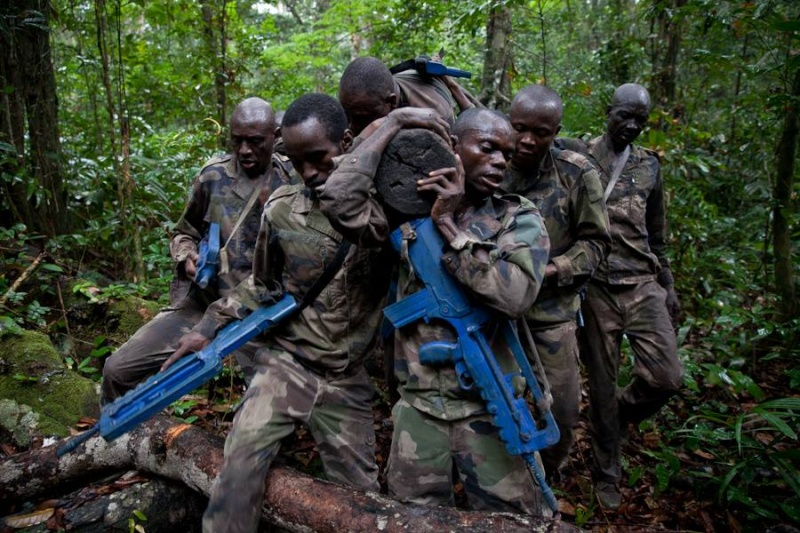 Armée du Gabon - Page 4 1372