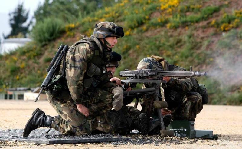 Armée Espagnole/Fuerzas Armadas Españolas - Page 37 14199