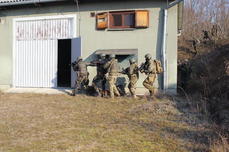 Slovenian Armed Forces / Slovenska vojska - Page 2 16118
