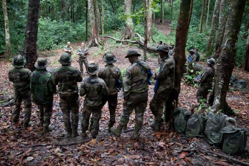 Armée du Gabon - Page 4 2017