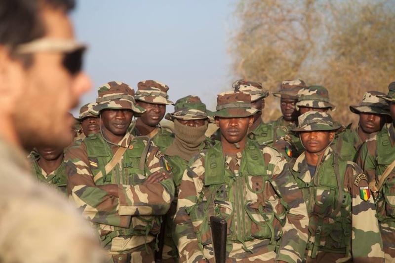Armée Sénégalaise - Page 7 2083