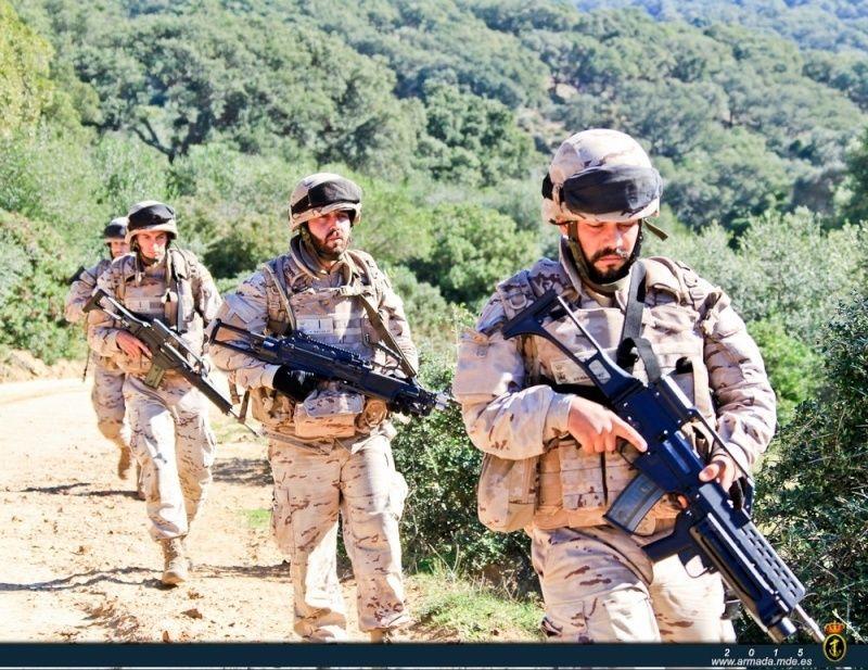 Armée Espagnole/Fuerzas Armadas Españolas - Page 37 210