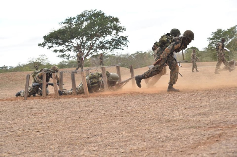 Force de défense de la Jamaïque / jamaica defence force (JDF) 2259
