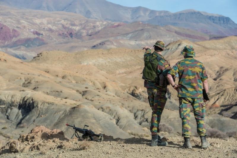 Armée Belge / Defensie van België / Belgian Army  2343