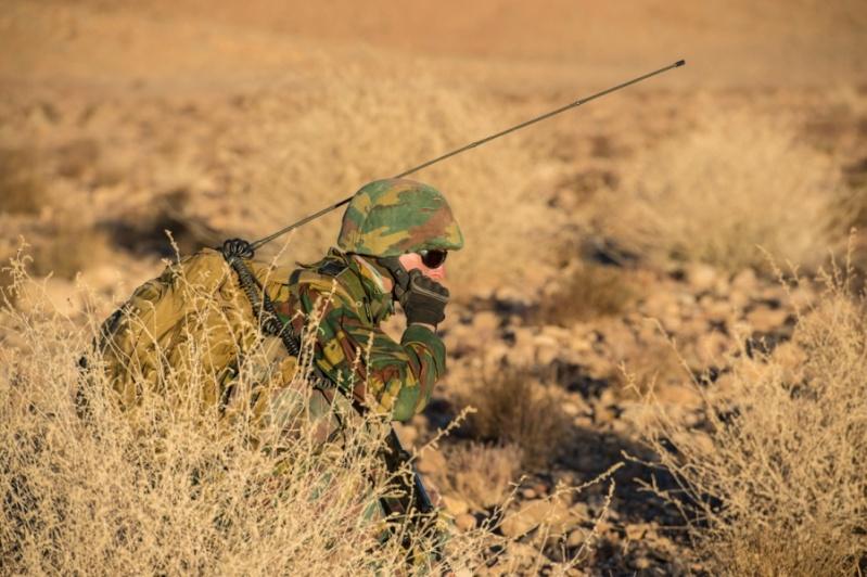 Armée Belge / Defensie van België / Belgian Army  3019