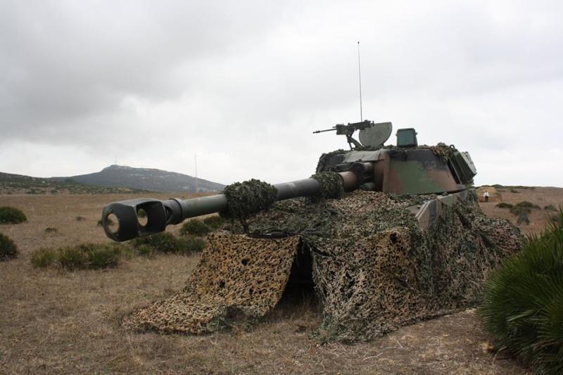 Armée Espagnole/Fuerzas Armadas Españolas - Page 37 3613
