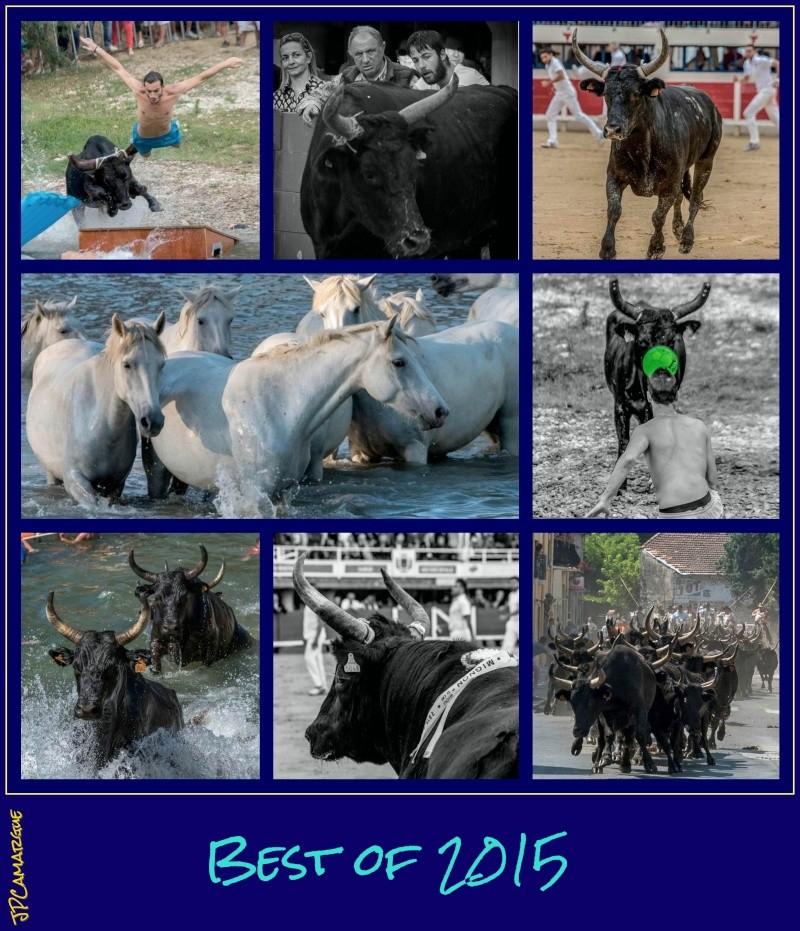Best of 2015 et Bonne année 2016 !!! Ob_9b011