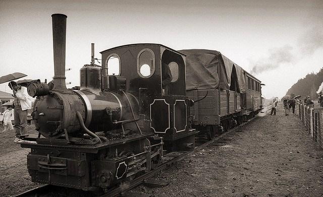 Locomotores curioses Koppel10