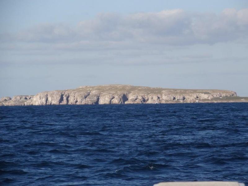Isla Marieta Dsc07310