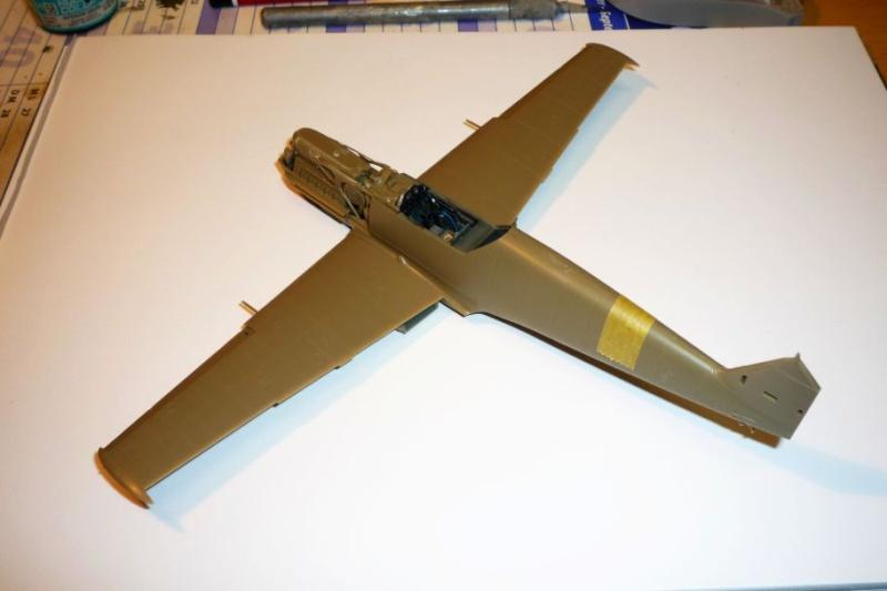 Messerschmitt Bf 109E-3 [ EDUARD 1/48° ] (Terminé). P1090812