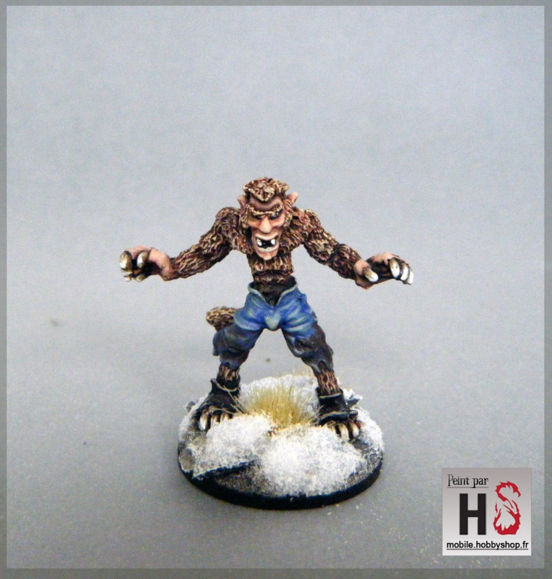 Galerie de Greg: Expedition Frostgrave - Page 3 2016-022