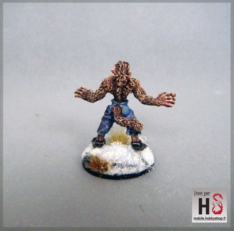 Galerie de Greg: Expedition Frostgrave - Page 3 2016-024