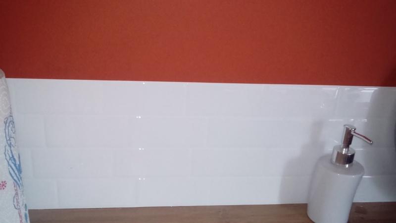 plaque murale auto adhésive - Page 2 Dsc_0923
