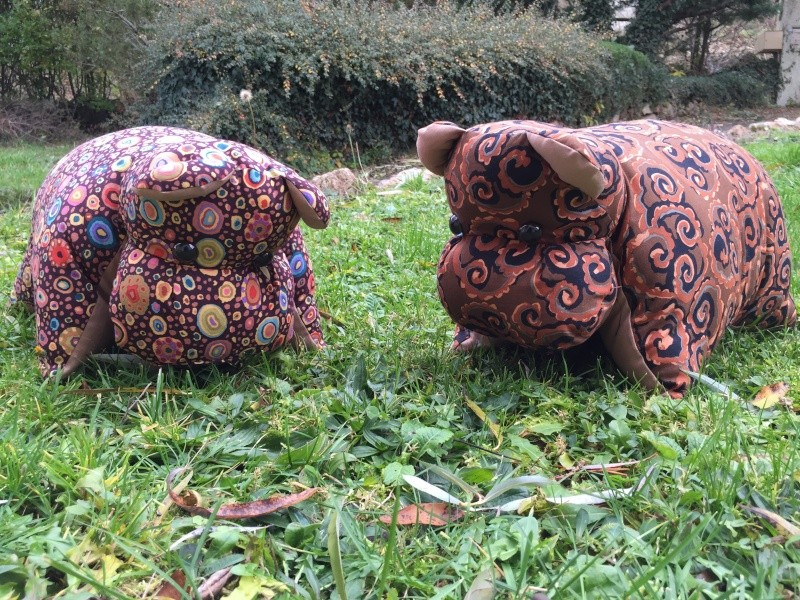 hippo-coussins Img_5412
