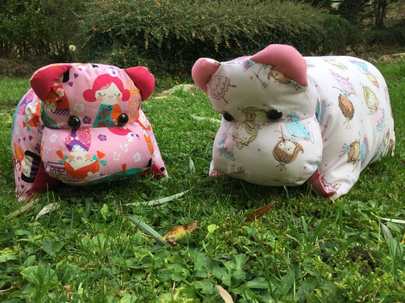 hippo-coussins Img_5413