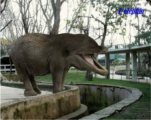 après la poésie du jeudi et les pashmen voici le zoo en folie Fun610
