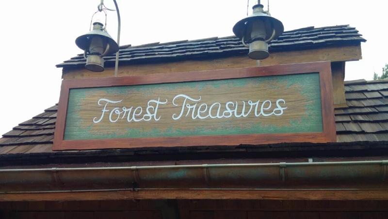 La Forêt de l'Enchantement : Une Aventure Musicale Disney [Frontierland - 2016-2017] - Page 9 Img_2026