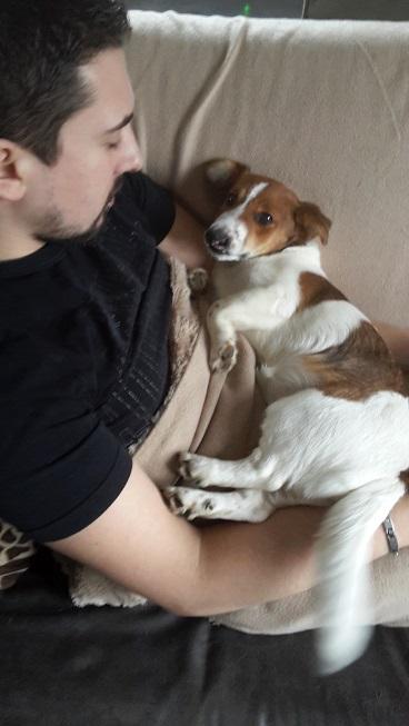 Adoptée 20151241