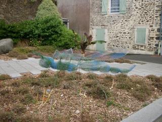 Libellules de sculpture Photo181