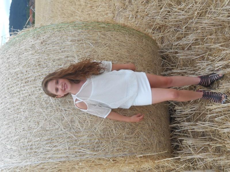 Montage champ de blé Dscn5212