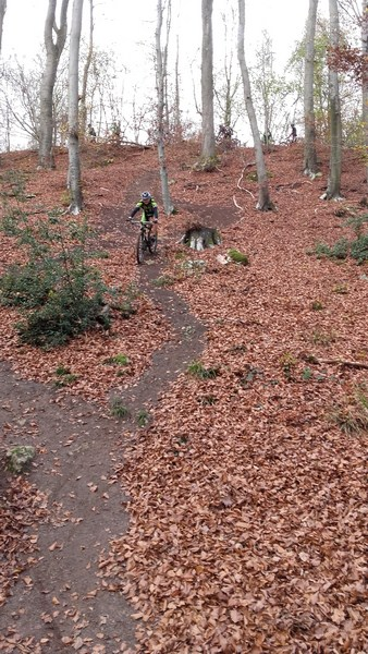 15-11-2015 - Forêt de Hez au départ de Bresles - Page 2 20151113