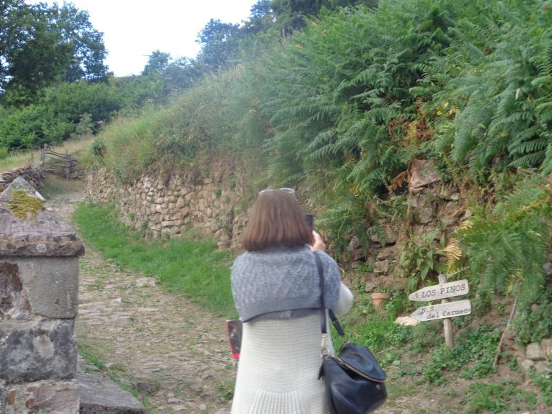 Année sainte de la Miséricorde : pélerinons ensemble de Lourdes à Garabandal. Garaba15
