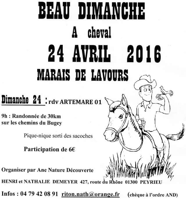 Les Marais de Lavours (01) 24 Avril 2016 Fb_img14