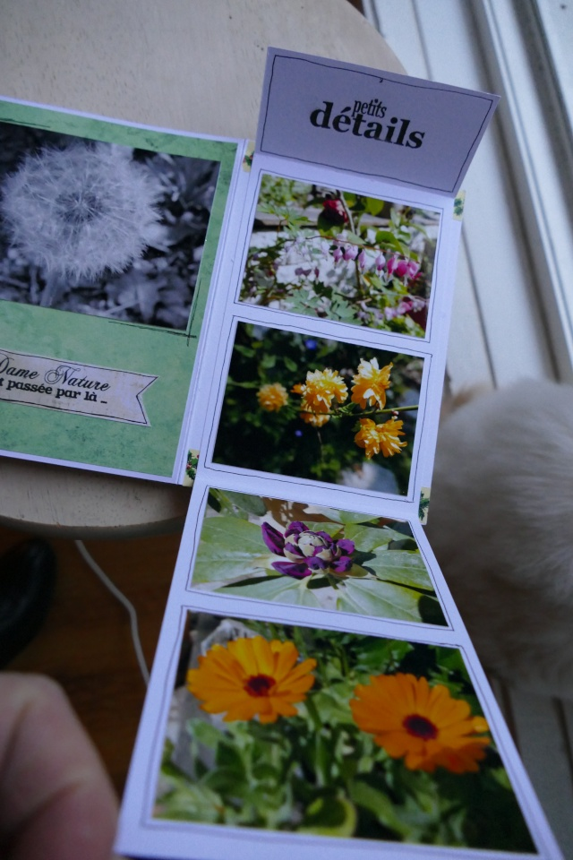 26 Novembre ! Un mini Pour NOEL ! - Page 4 P1090520