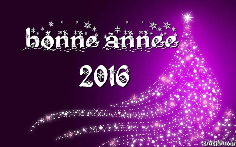 Meilleurs voeux 2016 Ob_1ed11