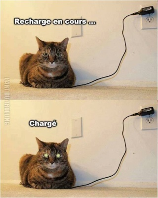 problème chargeur batterie additionnelle, fusible, capteur température? Charge12