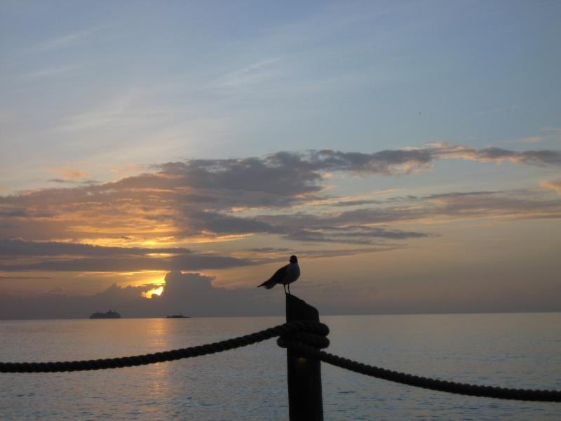 Caribbean Islands, Antigua, Galley Bay 02910