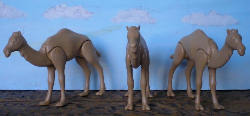 Bemalungen, Umbauten, Modellierungen - neue Tiere für meine Dioramen - Seite 2 223b1_10