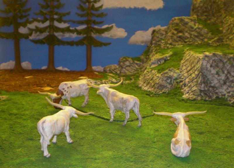 Meine Longhorn-Herde wächst - Seite 2 Barthe11