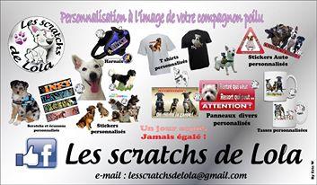 """Présentation """" Les scratchs de LOLA"""" Loladf10"""