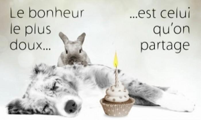 20 décembre 2012 Bon anniversaire Aurore Cc_el_10