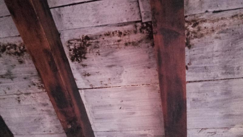 ancienne ferme rustique souhaite rajeunir ;) 20160237