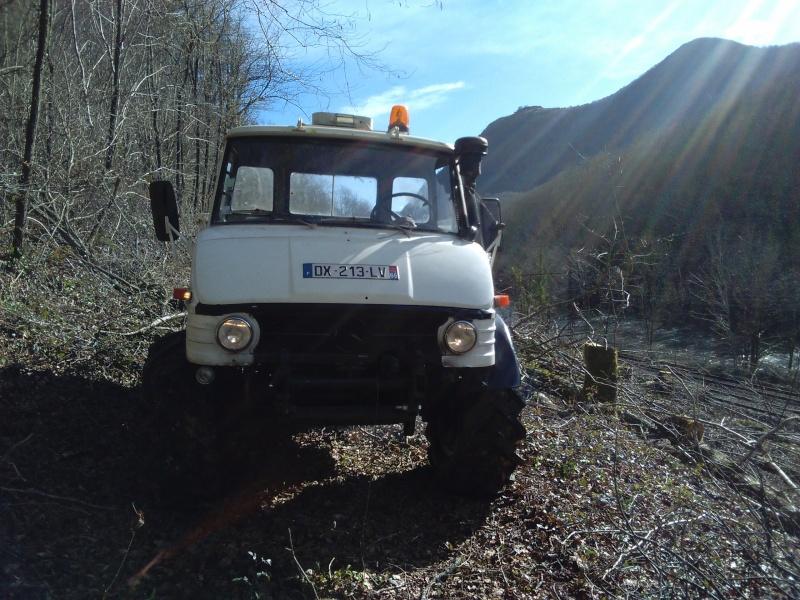 Modification des Jantes 11x20 en  forestiere Img_2014