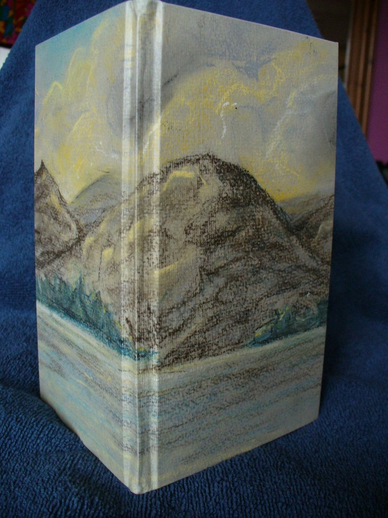 Pastel picture Book310