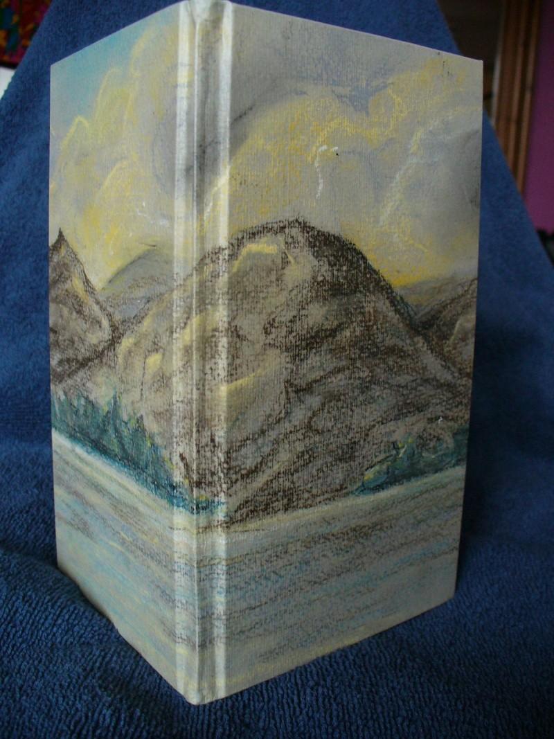 Pastel picture Book311