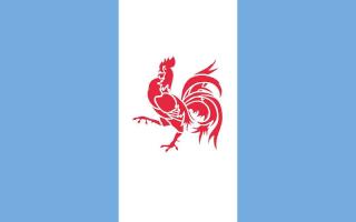 Gallia Flag_g12