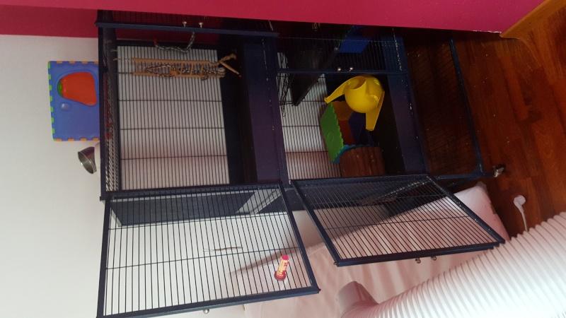Vend Cage Royale + Accessoires + autres petites cages dans le 77 20160113