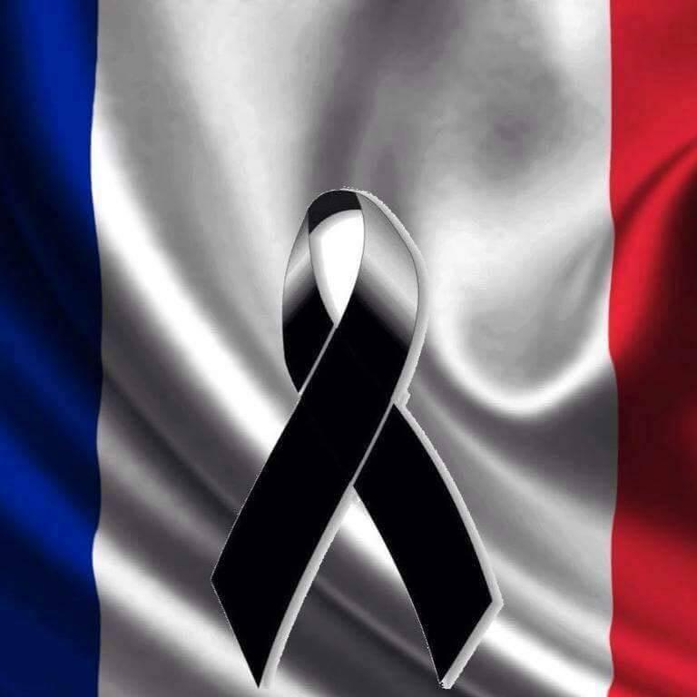 Hommage au victime de Paris... 12246911
