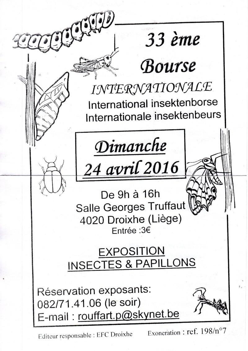 33e bourse internationale aux insectes Liège-Droixhe. Img11